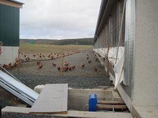 Genehmigungsmanagement landwirtschaftlicher Projekte